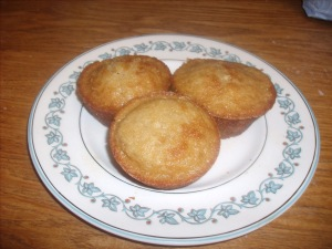 fdea9-apricotmuffins005