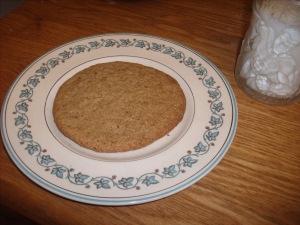 51b4c-gingercookie008